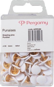 Pergamy punaises wit, doosje van 120 stuks